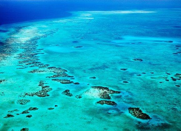 carib sea
